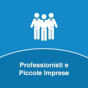 Soluzioni per Professionisti e Piccole Imprese